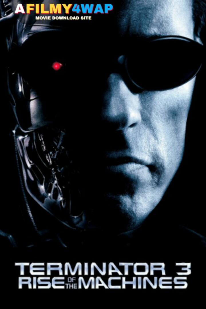 Terminator 3 - Rise Of The Machines (2003) Dual Audio
