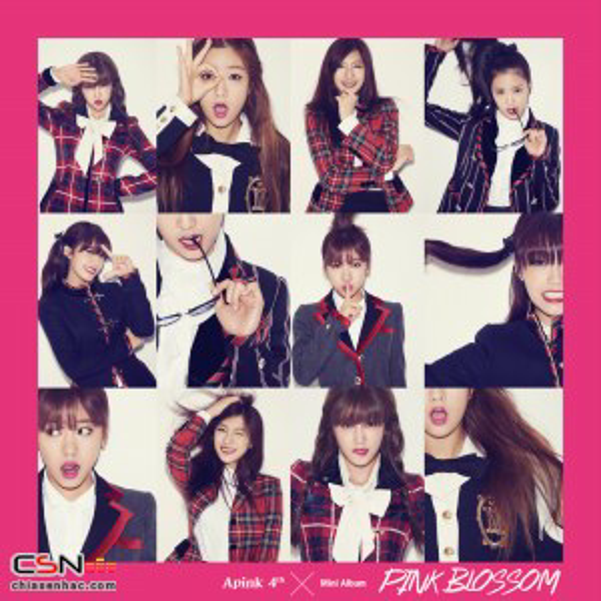 A Pink -  Mr Chu MP3 Download title=