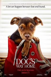A-Dogs-Way-Home-2019-Hindi-Dubbed-Movie-BluRay