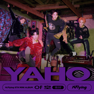 N.Flying - Pardon? Mp3