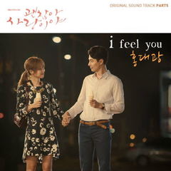 Hong Dae Kwang (홍대광) - I Feel You (It's Okay, That's Love Ost Part 5) Mp3